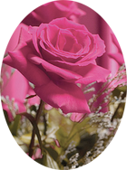 Ruth Goetsch